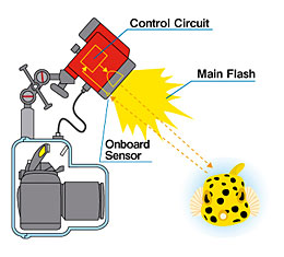 The onboard sensor meters strobe light in real time and ceases firing when appropriate exposure has been obtained.